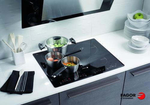 Bếp điện từ fagor